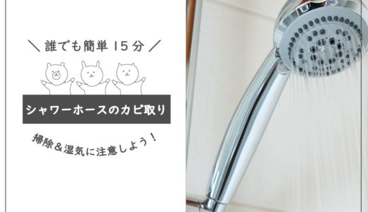 【誰でも簡単15分】シャワーホースのカビ取り|カビない素材・内側の汚れ落としも