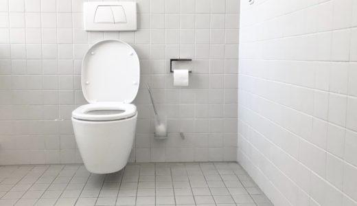 【誰でも簡単15分!】トイレの便器についたカビの落とし方・予防方法